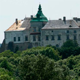 Tour to Castles around Lviv